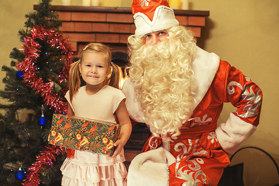 Дед мороз на дом на новый год
